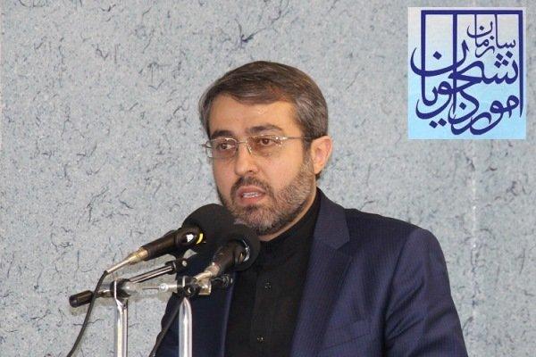 سید مهدی حسینی میرمحمدی